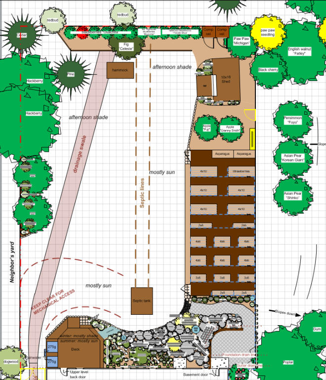 backyard plan